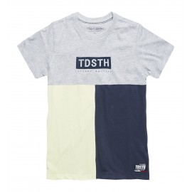 TEE-SHIRT MC ENFANT GARCON TEDDY SMITH T-SLO GRIS CHINE